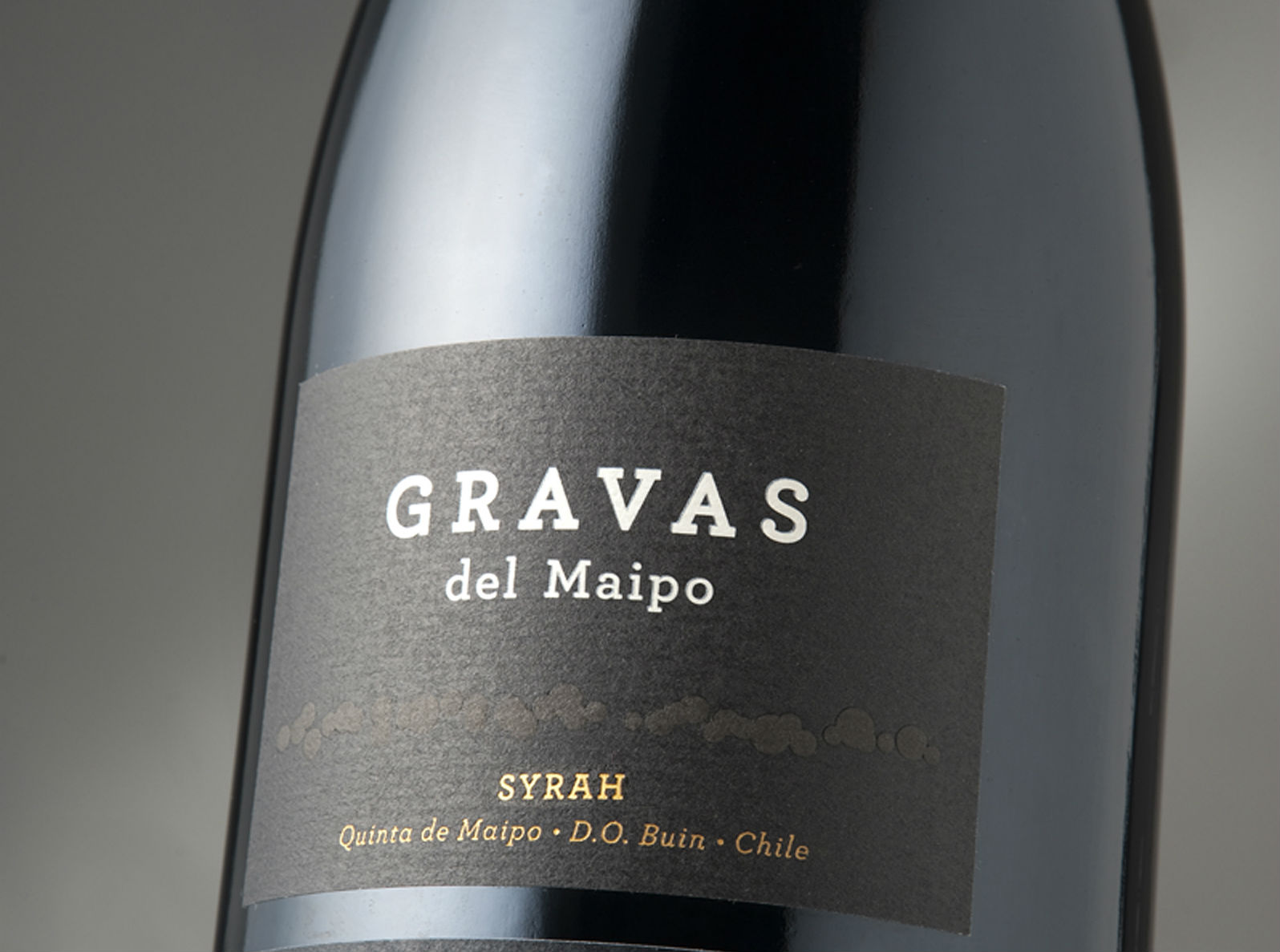 Gravas del Maipo 2016 among the Top 100 Wines of The Andes