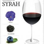 SYRAH_ingl