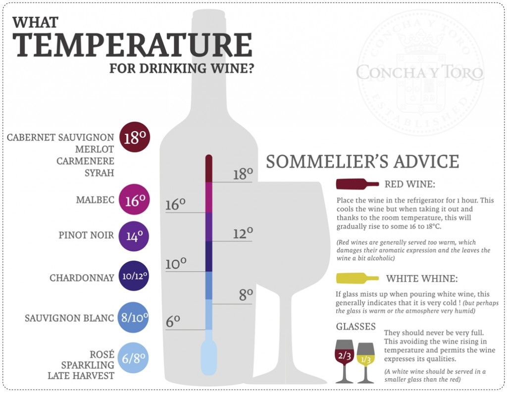 infographic_What-temperature-for-drinking-wine_Fans-1024x794