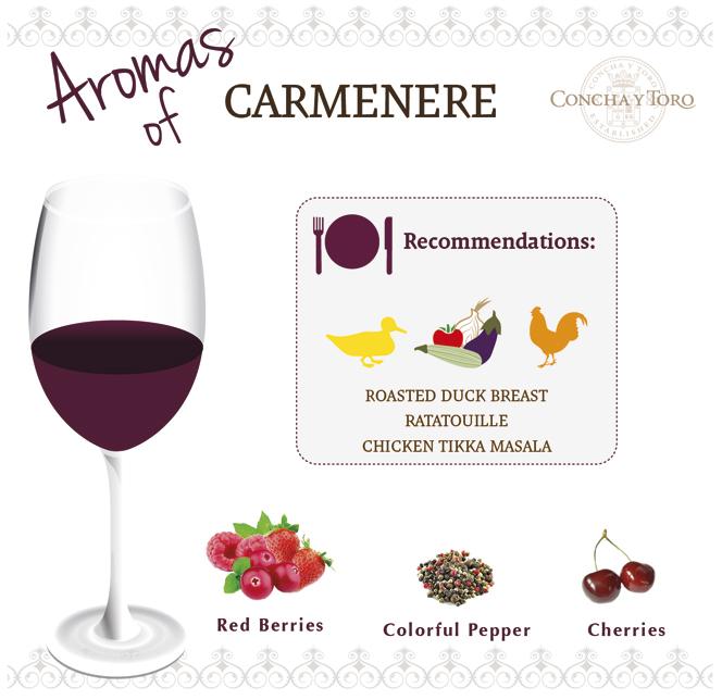 Carmenere-Eng