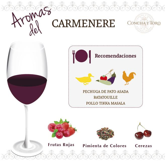 Carmenere-Esp