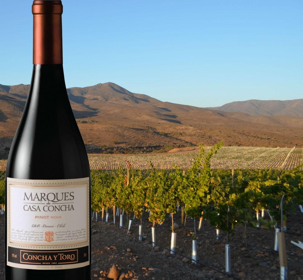 Marques de Casa Concha Pinot Noir Limari