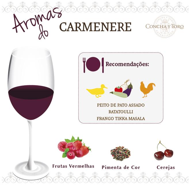 Carmenere-Port