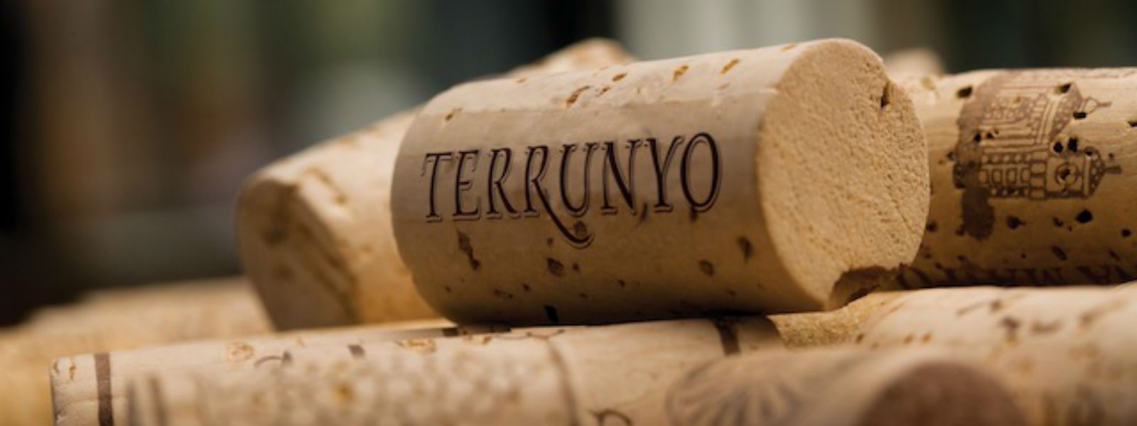 Terrunyo once again awarded outstanding scores