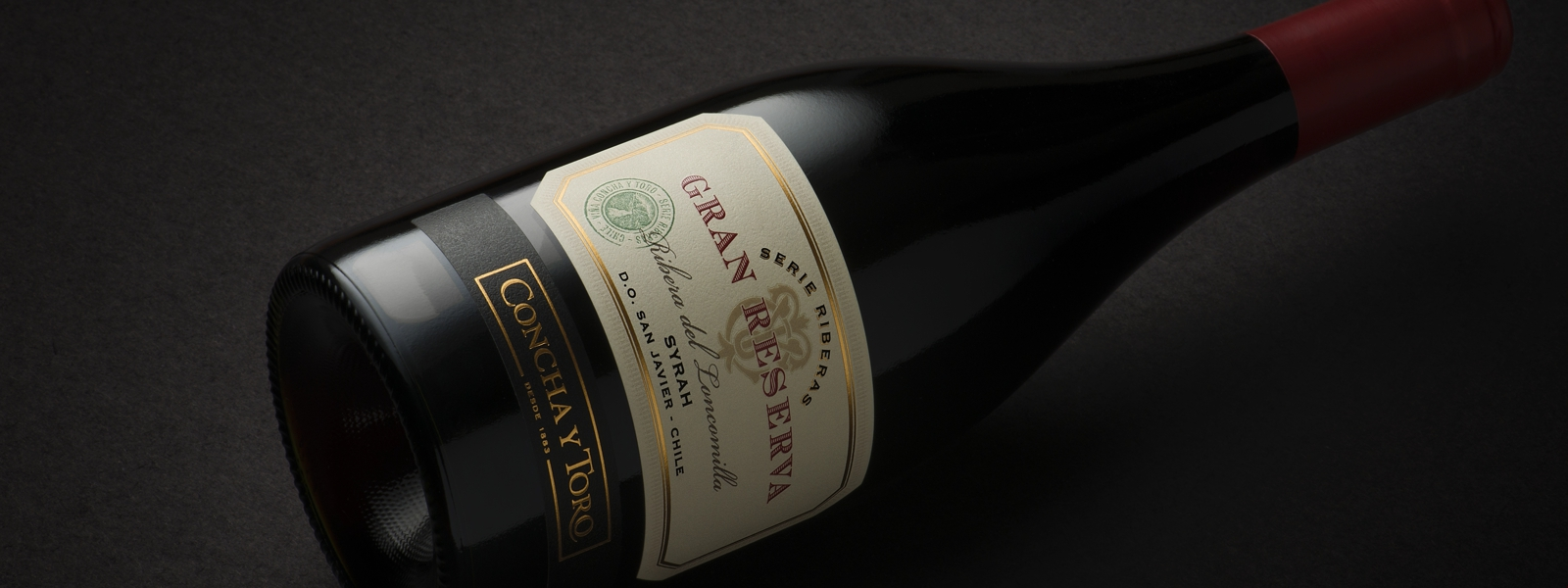 Gran Reserva Serie Riberas Syrah 2016 among the Top 100 Wines under USD $30