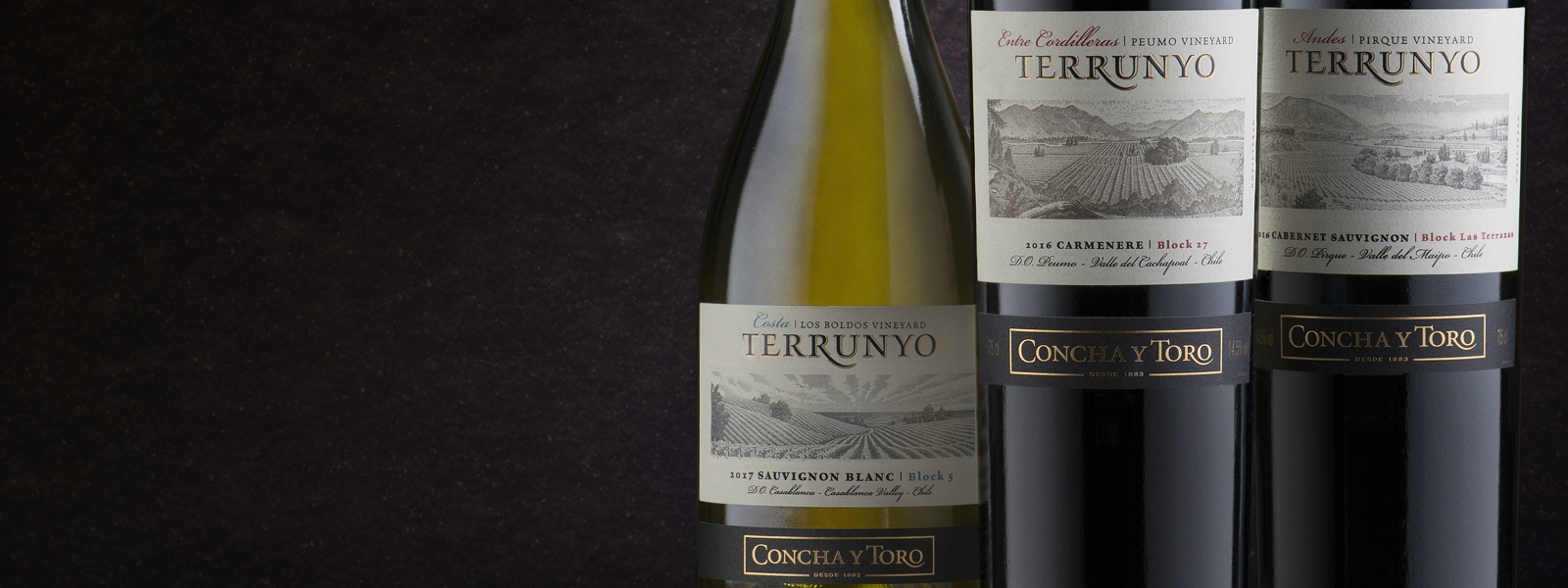 Terrunyo Sauvignon Blanc 2018 named the Best Wine from Casablanca in the 2019 Descorchados