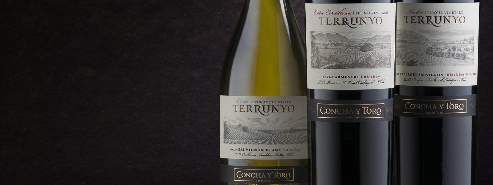 Terrunyo Sauvignon Blanc 2018 es elegido Mejor Vino de Casablanca en Descorchados 2019