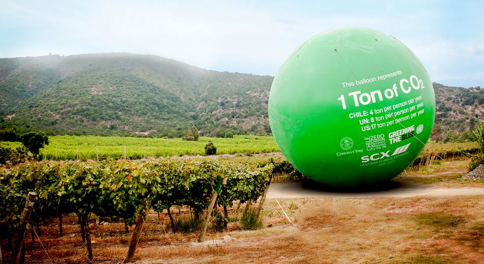Concha y Toro's commitment to Native Forests