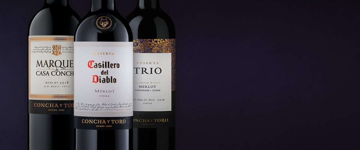 Merlot and three perfect wine pairings