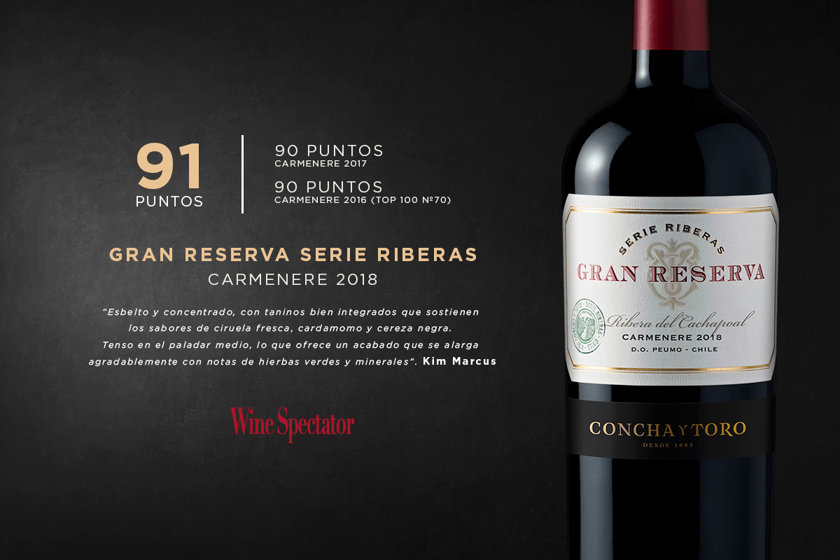 14_de_enero_wineblog_gran_reserva_Winespectator_.1200x800_post_ESP_