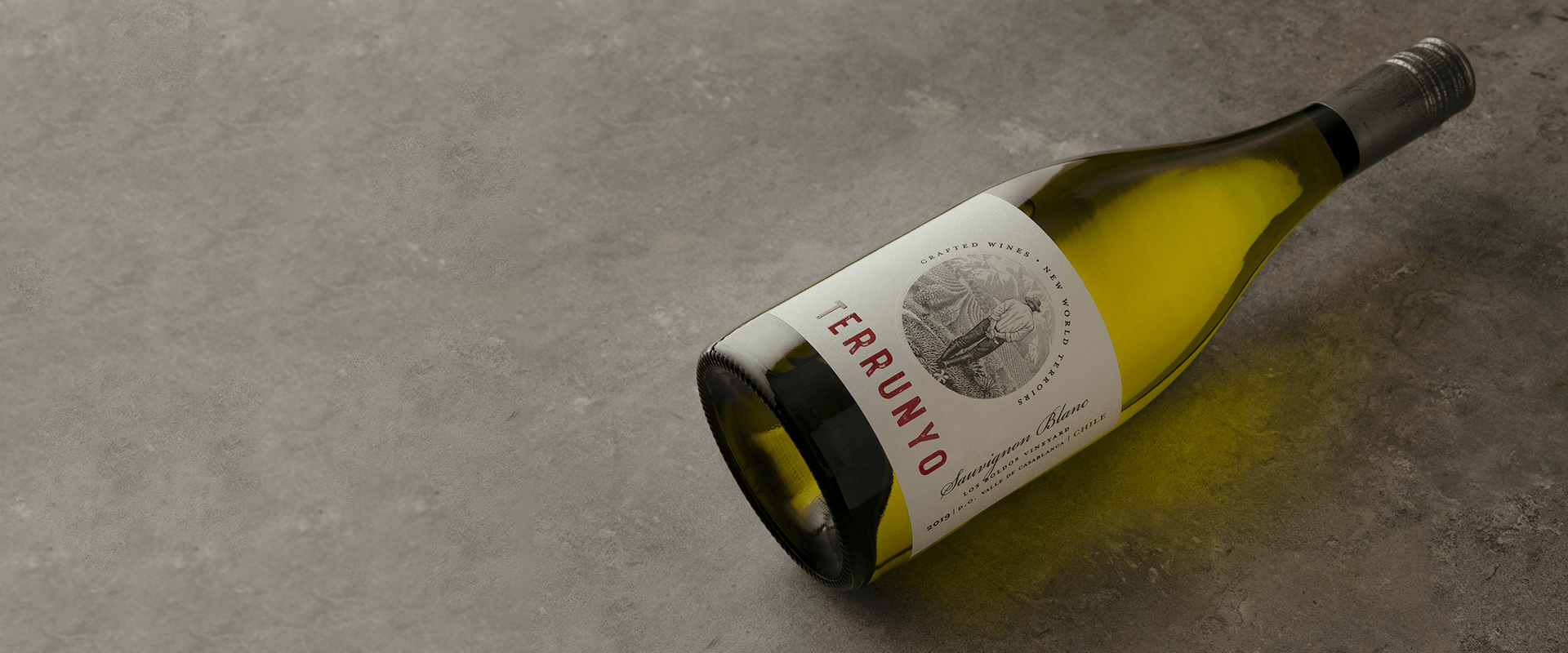 Terrunyo is named best Sauvignon Blanc from Chile and best wine from Casablanca Valley