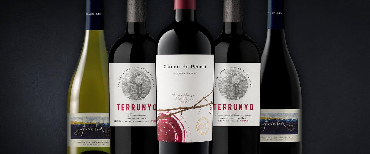 Tim Atkin entrega notables puntajes para el portafolio de Vinos De Origen de Concha Y Toro