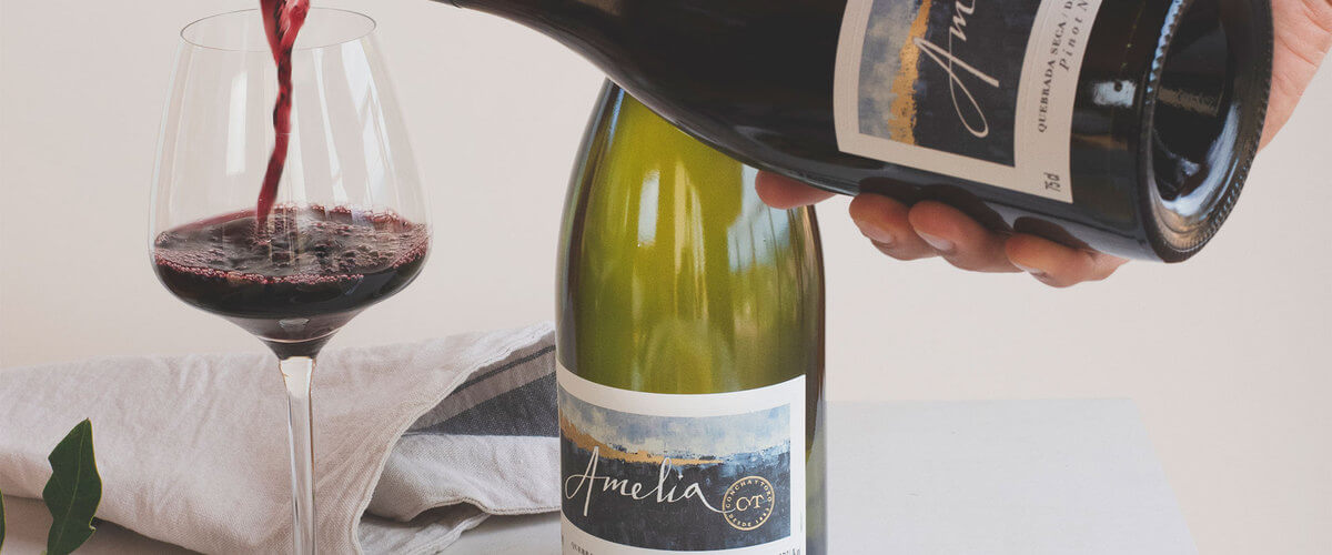 Chardonnay y Pinot Noir: distintas cepas, mismas condiciones